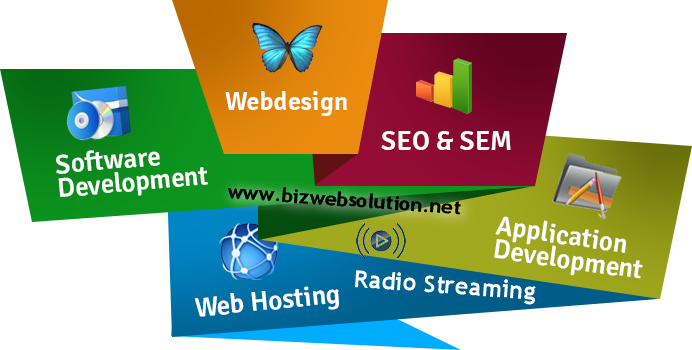 bizwebsolution-design